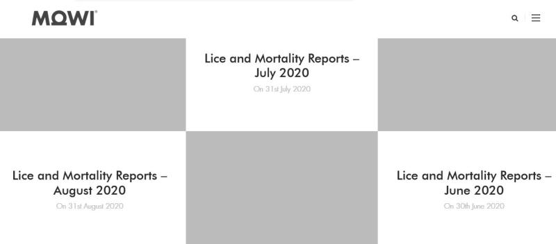 Lice & Mort reporting