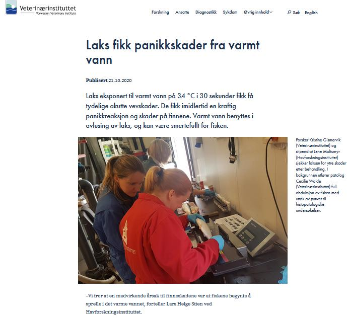 Undercurrent News Thermolicer 27 Oct 2020  Vet Inst report #1