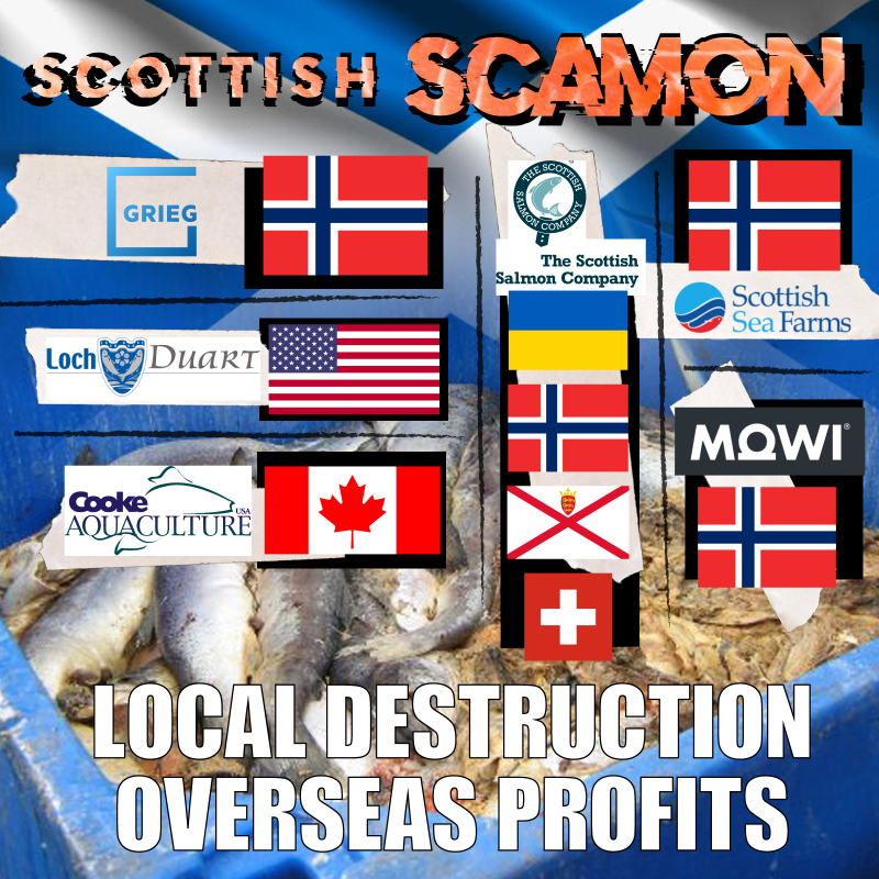 Scottish Scamon company logos & flags Local Destruction Overseas Profits