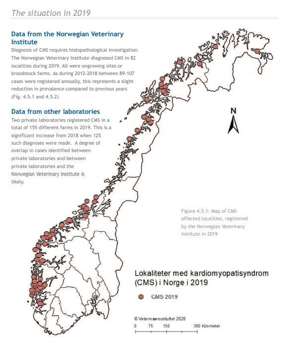 Norway blog #28