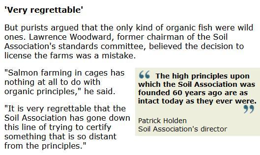 BBC Newsnight 2006 #2