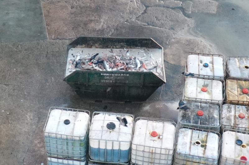 CIWF Scottish Salmon Investigation March 2021 #14 waste