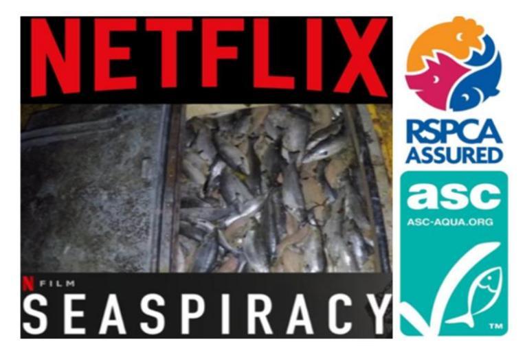 Seaspiracy Netflix salmon poster RSPCA ASC
