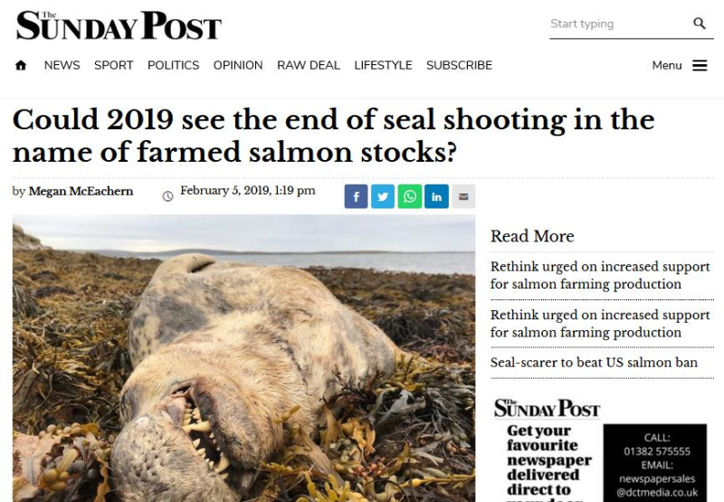 Sunday Post Feb 2019
