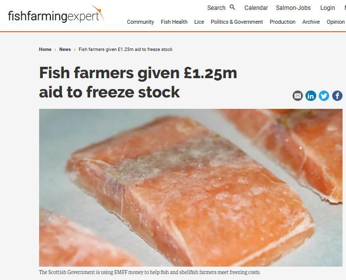 Fish Farming Expert June 2020 Freeze money