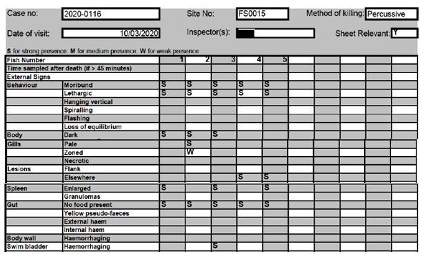 FHI Greshornish March 2020 report #4