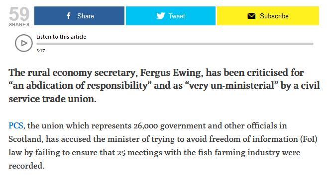 Fergus Ferret 5 June 2020 #2