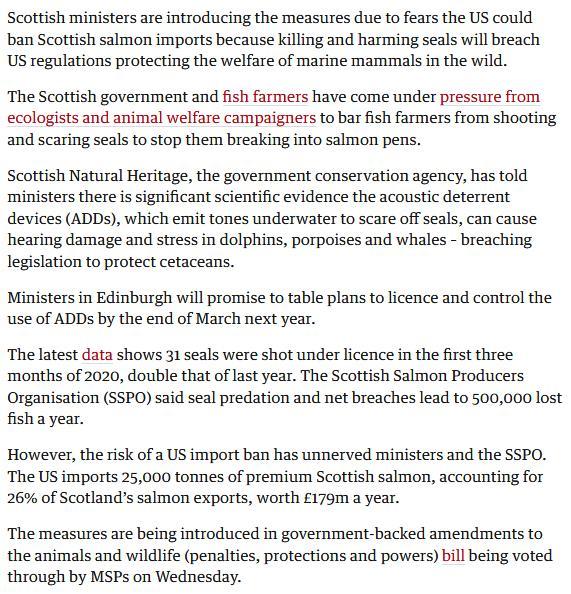 Guardian 17 June 2020 #2