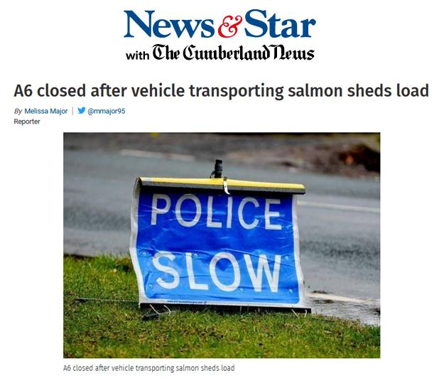 Cumbria salmon spill 30 June 2020 News & Star