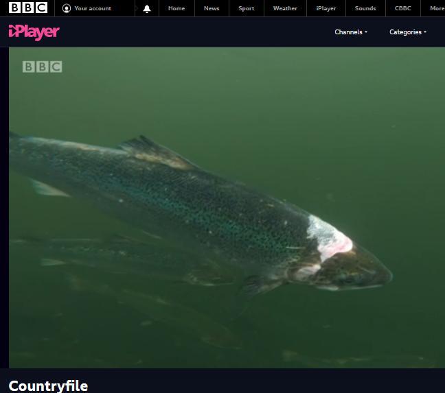 BBC Countryfile 6 Dec 2020 #1