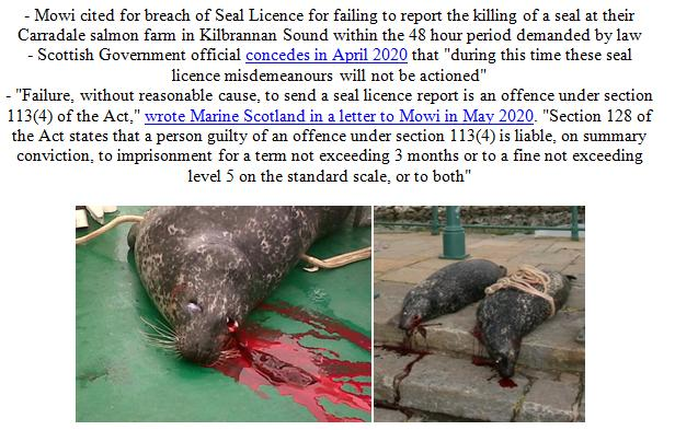 PR Illegal Killing of Seals by Scottish Salmon Farms 21 Feb 2021 #4