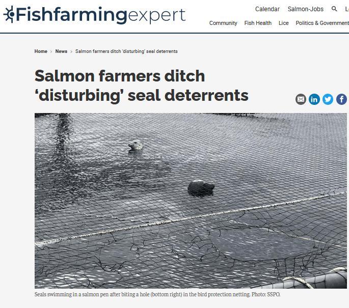 Fish Farming Expert June1 March 2021 #1