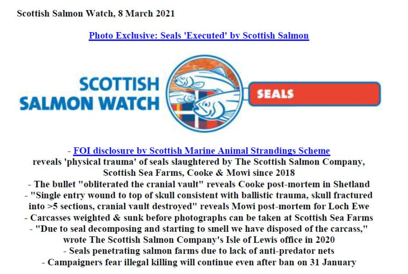 PR Photo Exclusive Seals Executed by Scottish Salmon 8 March 2021 #1