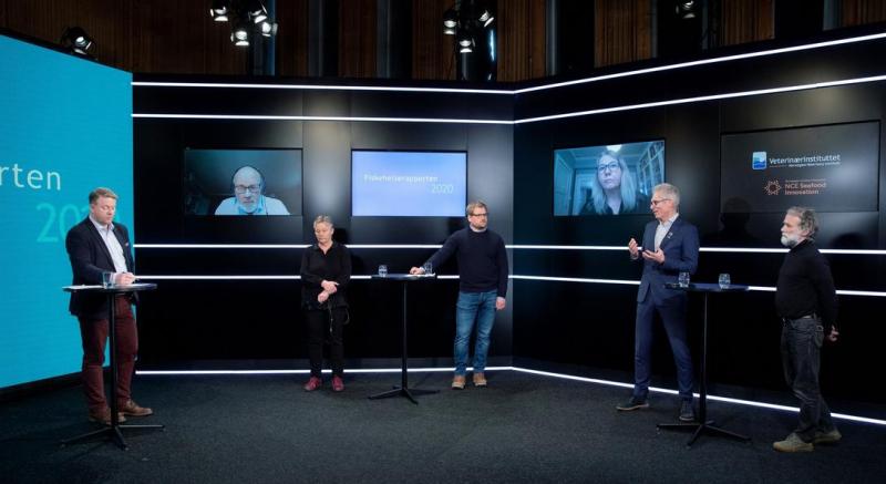 Norway Fish Health report 2020 Norwegian #2 press conference
