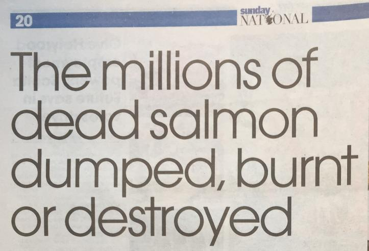 Sunday National 21 March 2021 newspaper version #1 headline