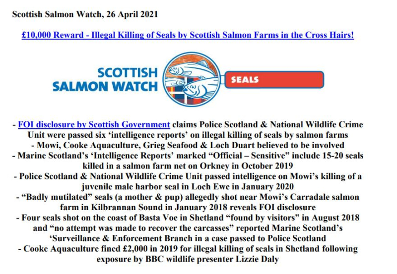 PR £10 000 Reward Illegal Killing of Seals by Scottish Salmon 26 April 2021 #1