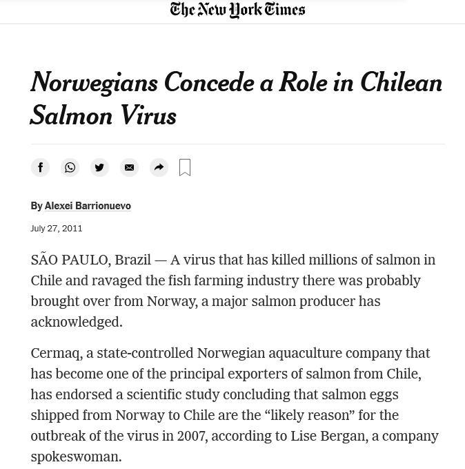 NY Times 2011 #1