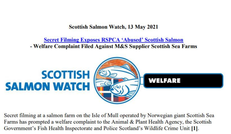 PR Video Exposes RSPCA Abused Scottish Salmon May 2021 #1