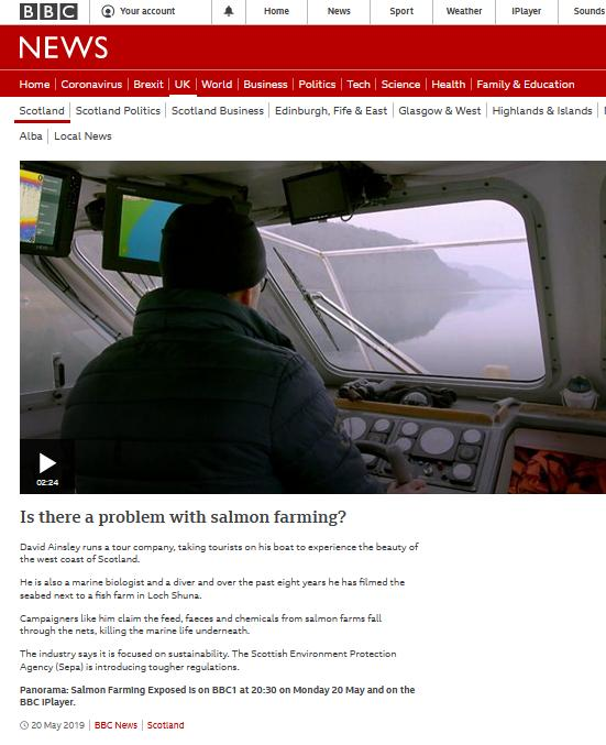 BBC blog #9