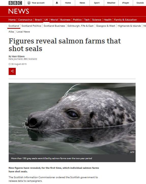 BBC blog #13