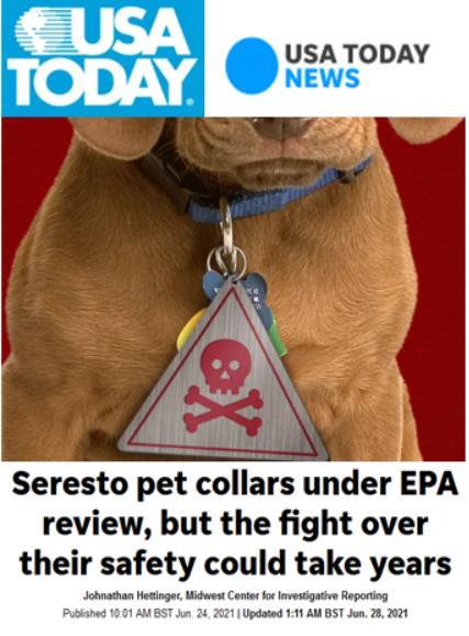 Pet deaths blog June 2021 #14