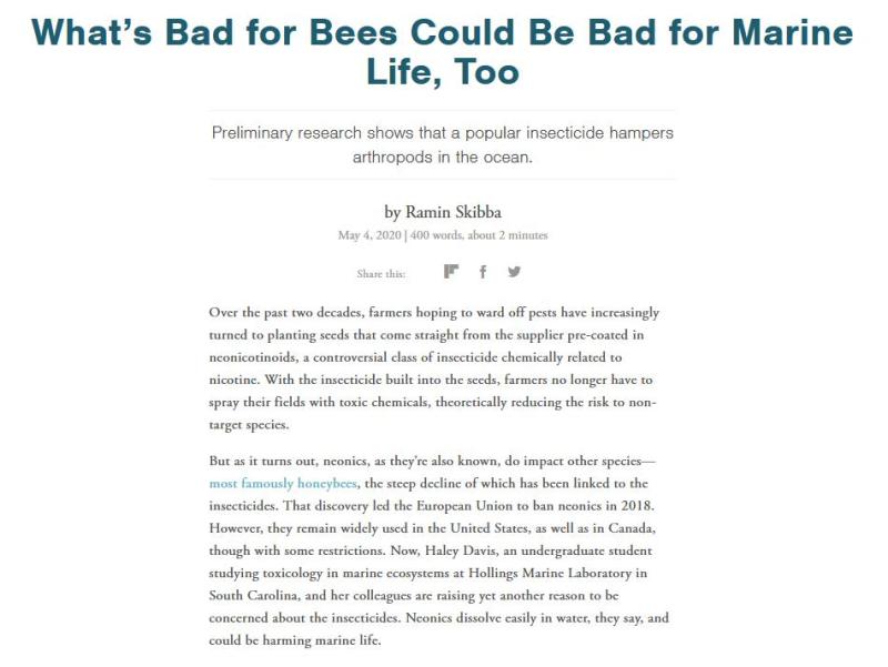 Pet deaths blog June 2021 #23