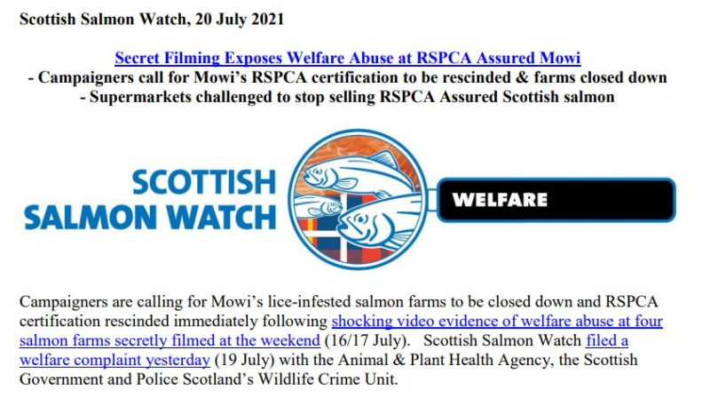 PR Secret Filming Exposes Welfare Abuse at RSPCA Assured Mowi 20 July 2021 #1