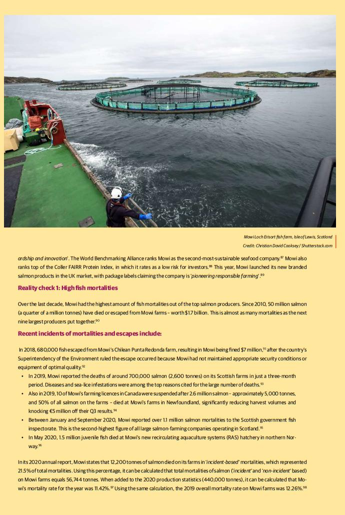Investors warning report July 2021 Mowi case study #2