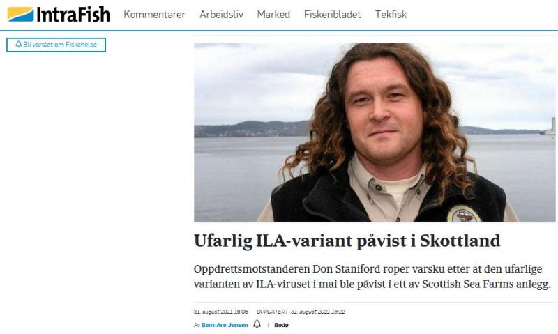Intrafish 31 Aug ISA story in Norwegian #2