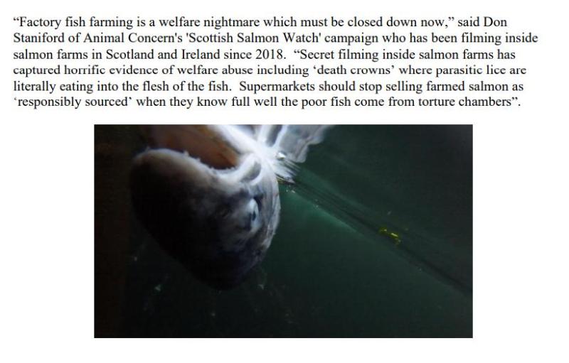PR NASF & Animal Concern 18 September 2021 #8