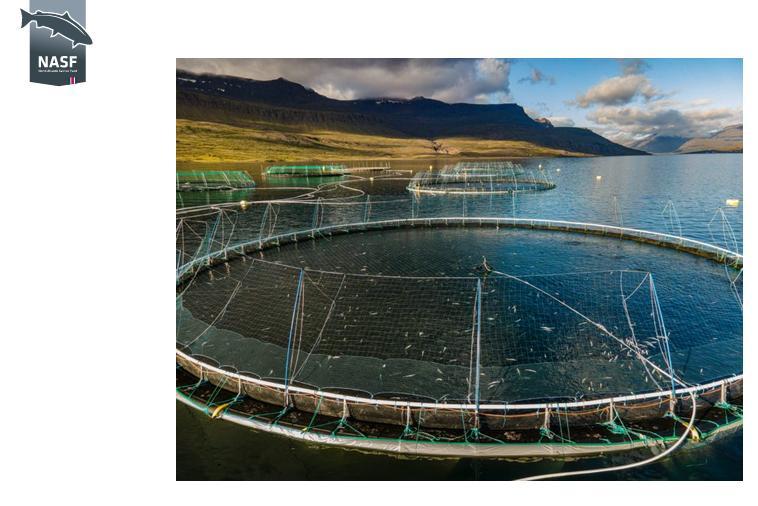 Iceland NASF PR 17 Sept 2021 #3