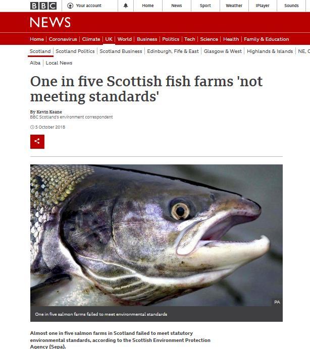 BBC News Oct 2018 #1