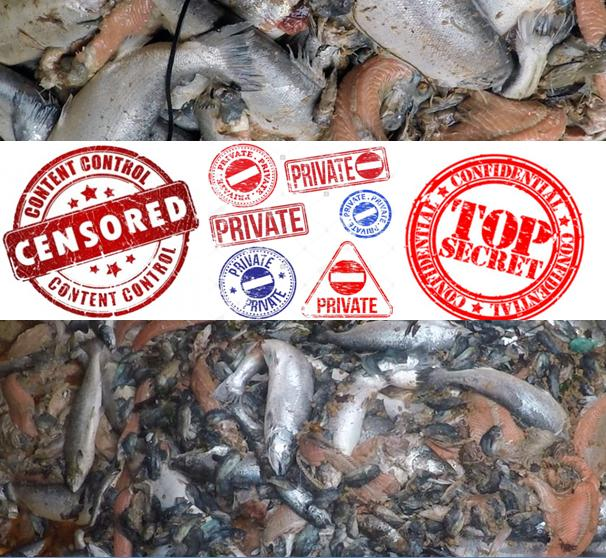 Censored salmon