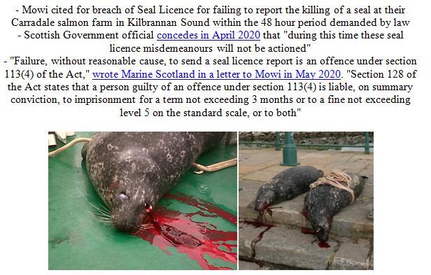 PR Illegal Killing of Seals by Scottish Salmon Farms 25 Feb 2021 #4