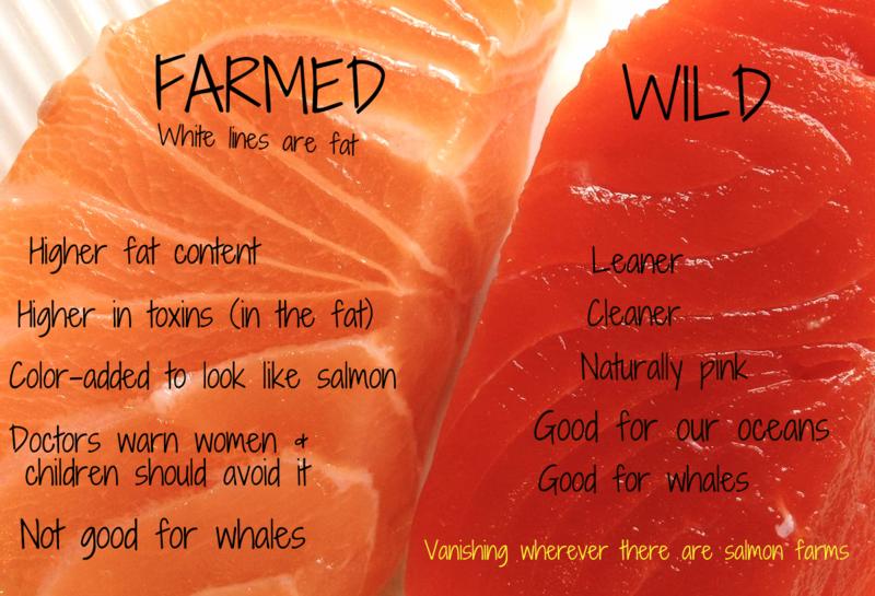 Wild Farmed #1