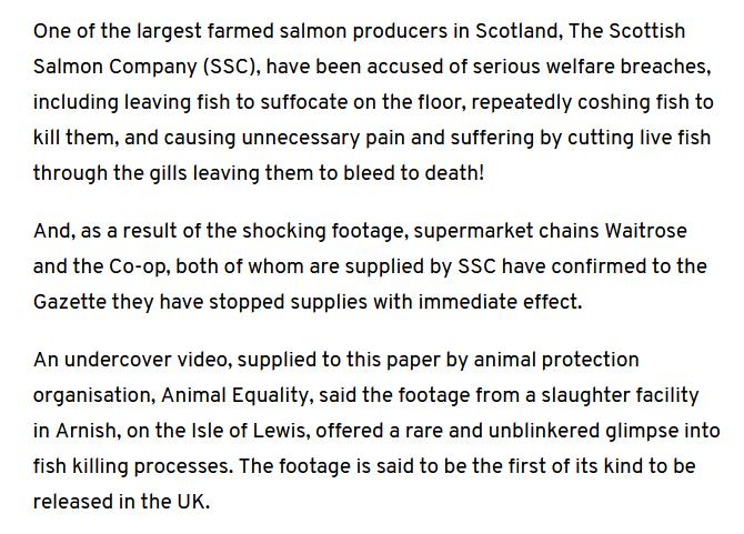 Native Hebridean salmon #4