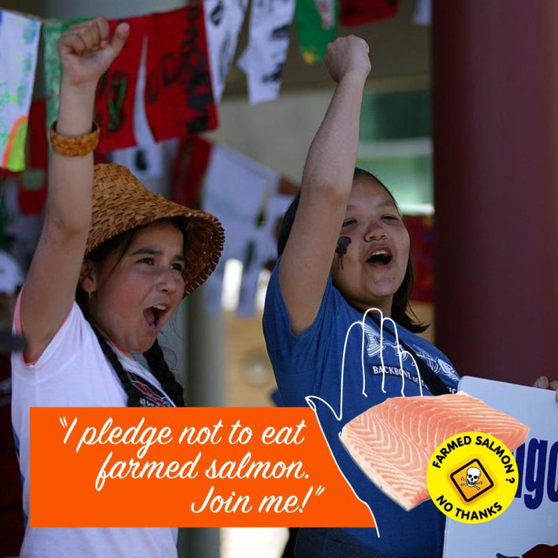 Pledge #17 Molina & Laterra