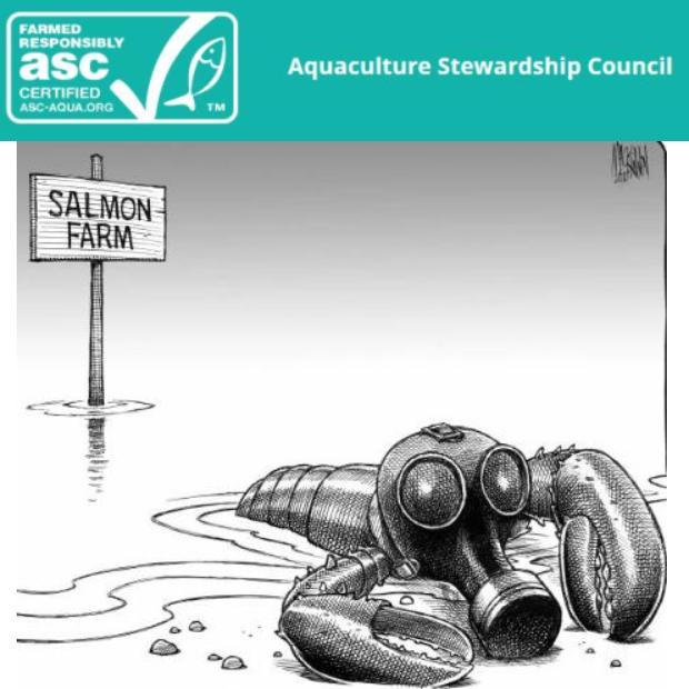 ASC lobster cartoon