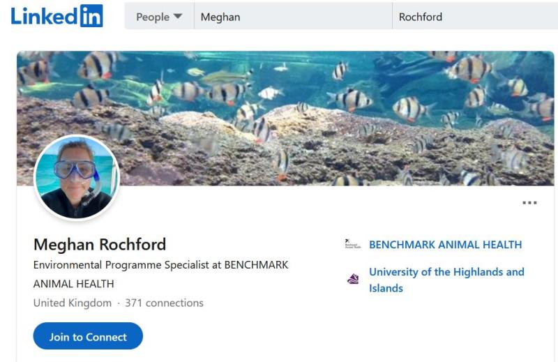 Meghan Rochford LinkedIn