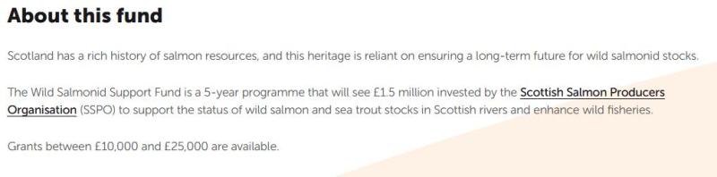 Foundation Scotland #2