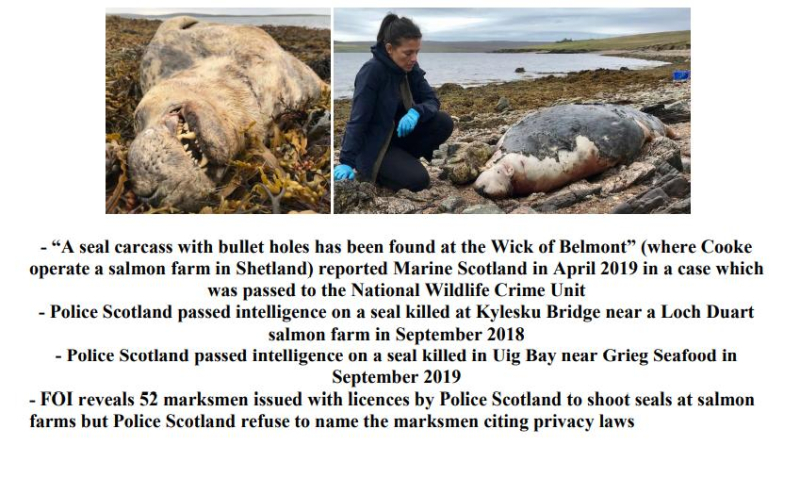 PR £10 000 Reward Illegal Killing of Seals by Scottish Salmon 26 April 2021 #2