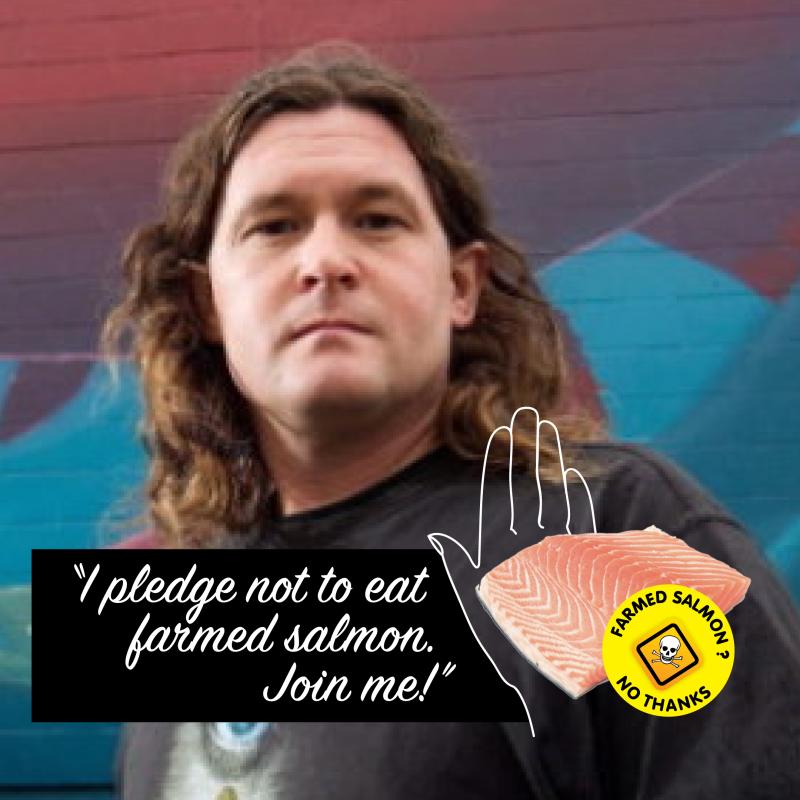 Pledge #4 Don new version