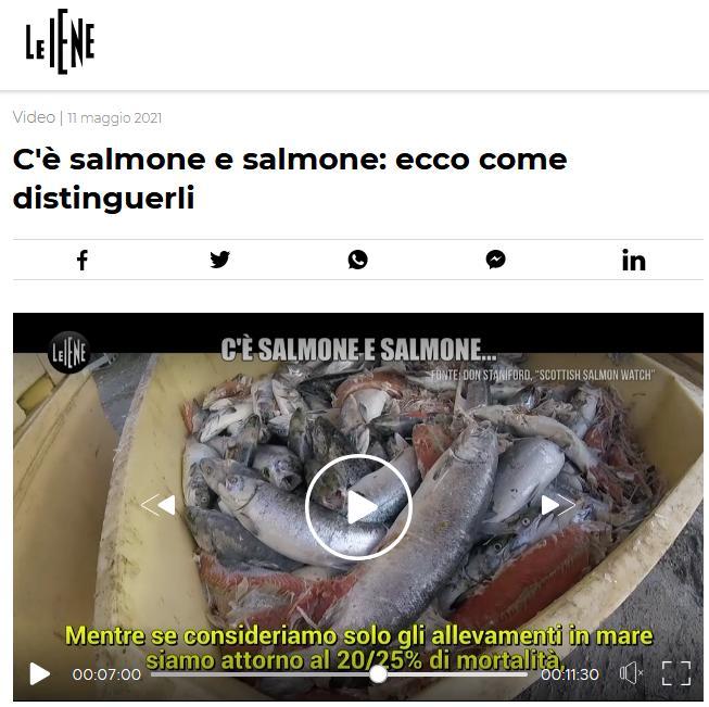 Italian TV May 2021 #5 Grieg