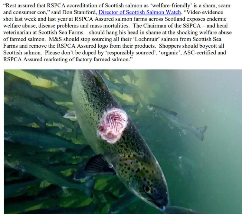 PR Video Exposes RSPCA Abused Scottish Salmon May 2021 #3