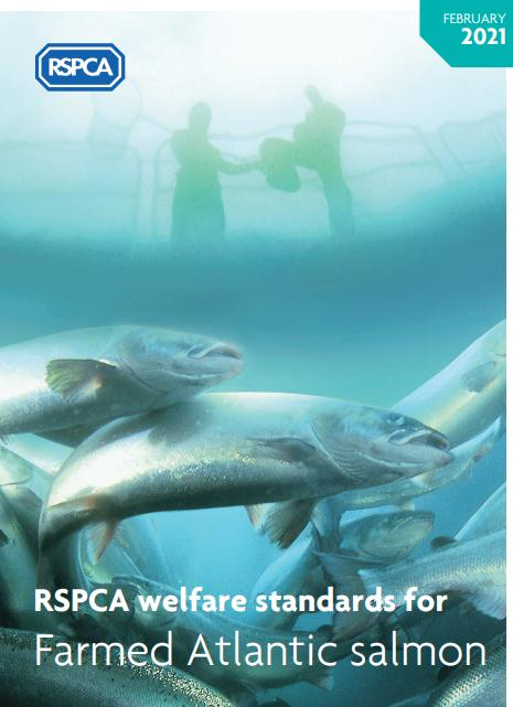 RSPCA Feb 2021 front cover
