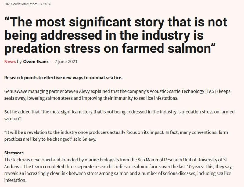 Salmon Business Genus Wave June 2021 #2