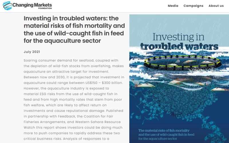 Investors warning report July 2021 #4