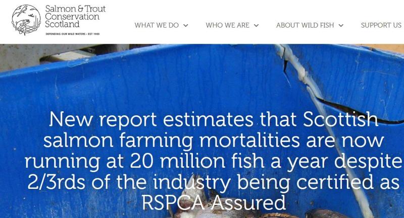 RSPCA capture blog 30 July 2021 #2