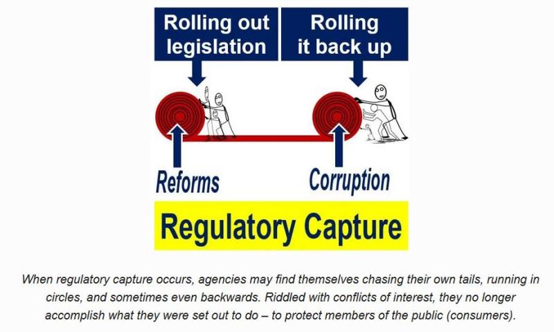RSPCA capture blog 30 July 2021 #9
