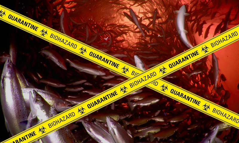 Poster #2 Biohazard Quarantine Blood Red
